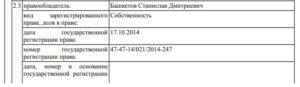 Глава РПН Петербурга Башкетова могла записать на сына свои земельные участки