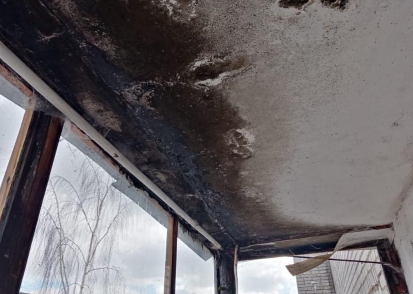 Крышу смоленской художницы планируют отремонтировать