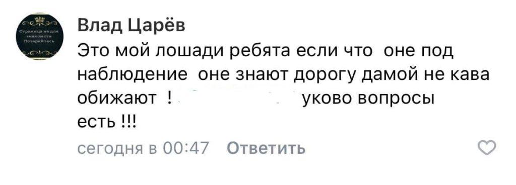Табун лошадей внезапно появился в центре города в Тверской области