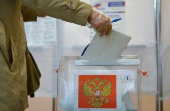 выборы, политика