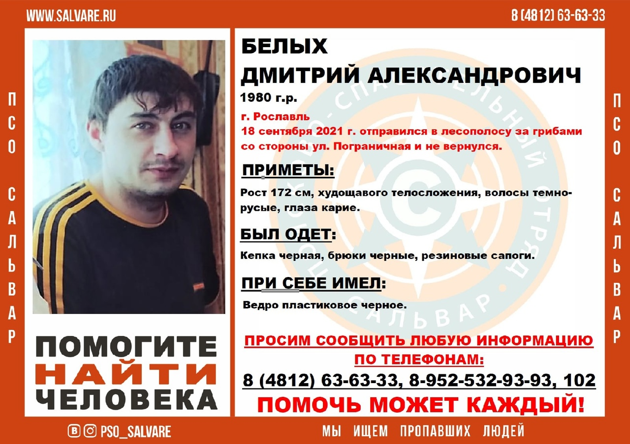 В Смоленской области организовали поиски пропавшего 41-летнего грибника
